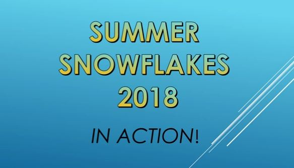 Summer Snowflakes Reflection